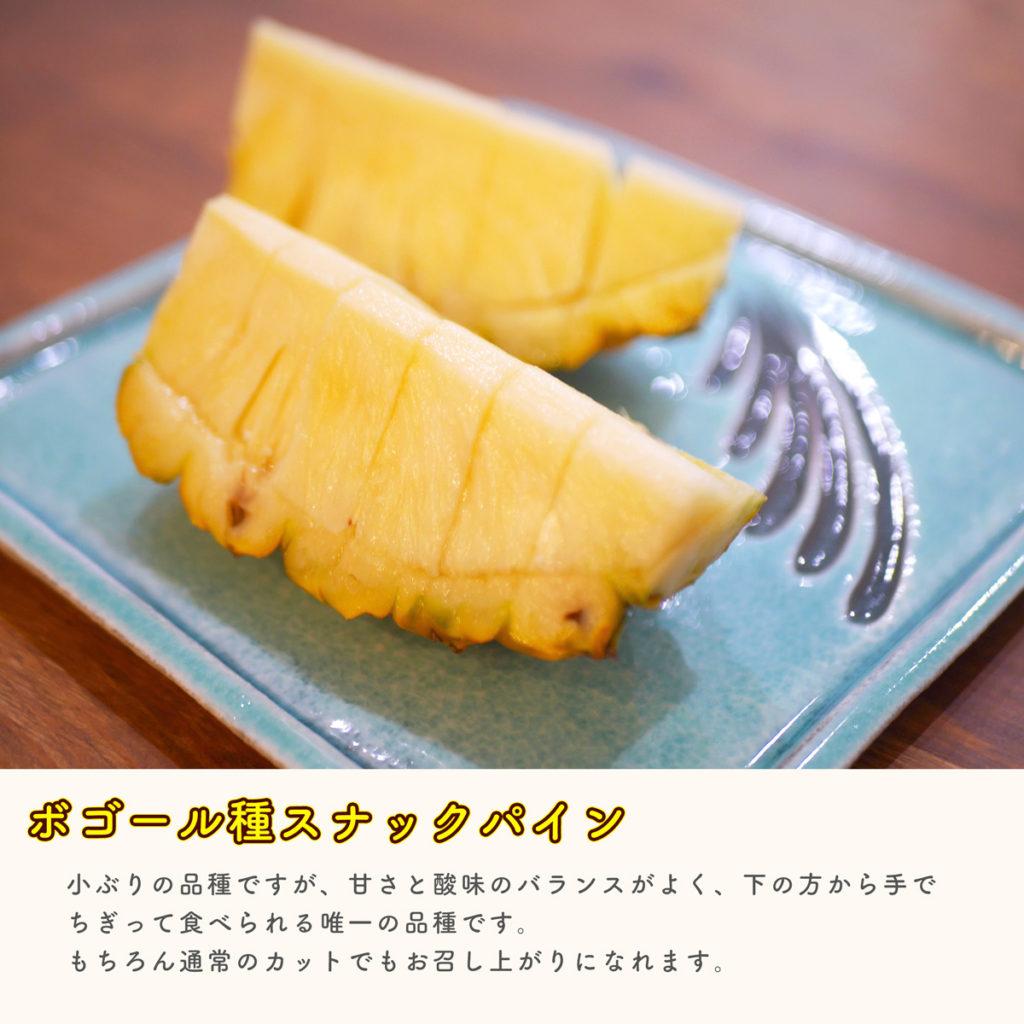 沖縄産 DOHO STYLE パイナップルカット