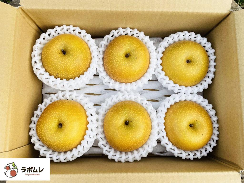 長野県石川さんの梨